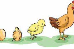 Soal Ulangan Harian IPA Kelas 3 SD Materi Pertumbuhan dan Perkembangan Makhluk Hidup