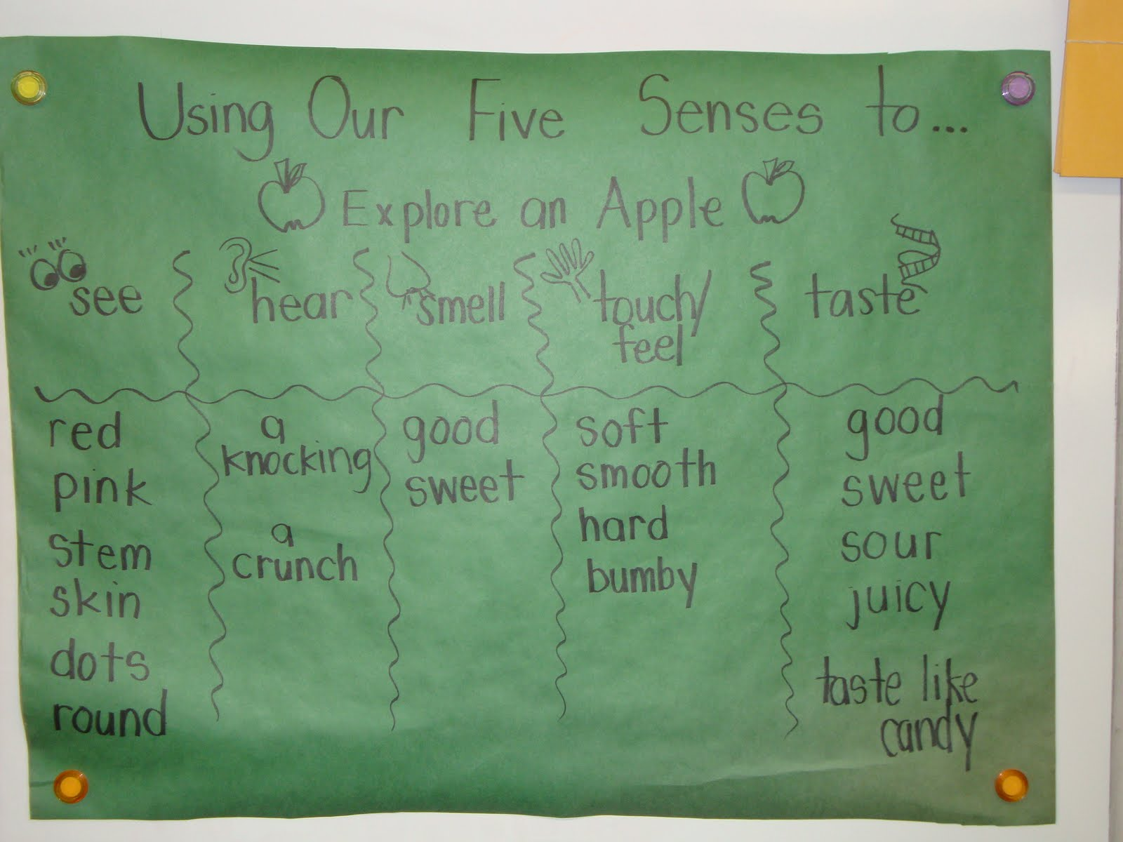 Today In First Grade Apples