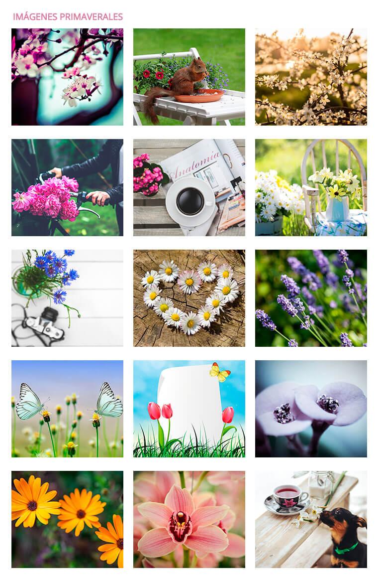 15-imagenes-primaverales-gratis-en hd