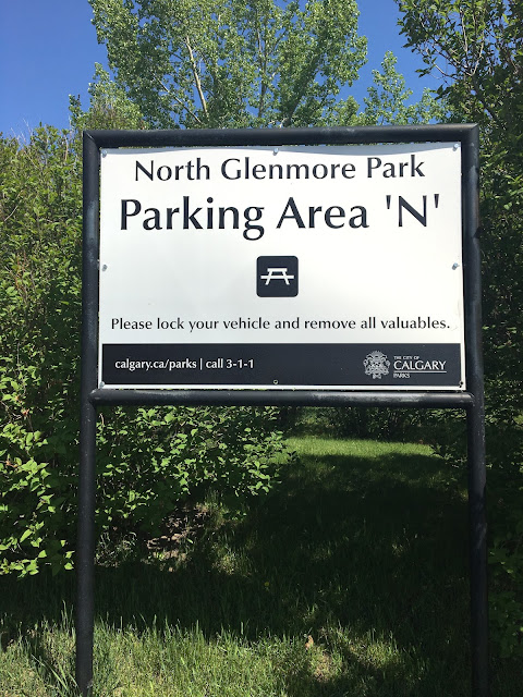 Pictures from North Glenmore Park walk!