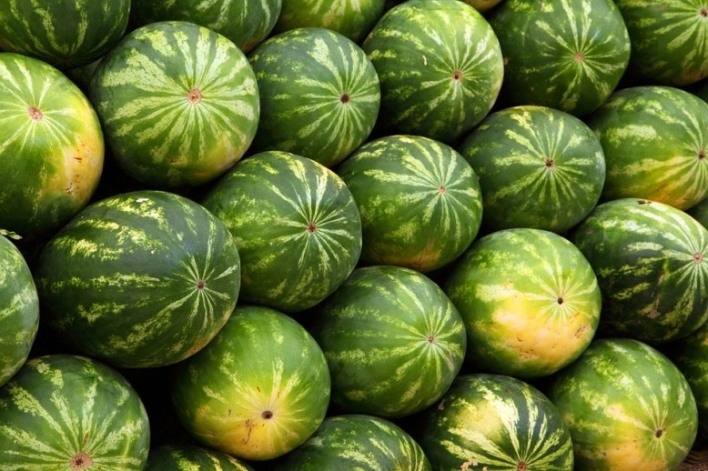 how to select a ripe watermelon