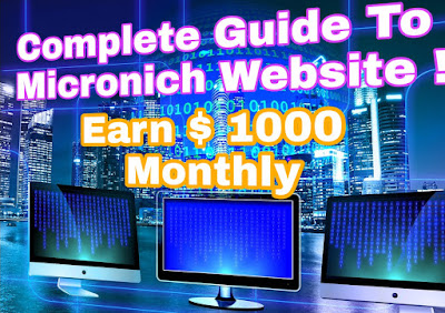 Create micronich website guide