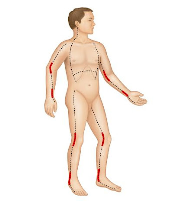 What is Escharotomy - Definition, Symptoms, Causes, Treatment