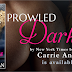 Release Week Blast: PROWLED DARKNESS by Carrie Ann Ryan