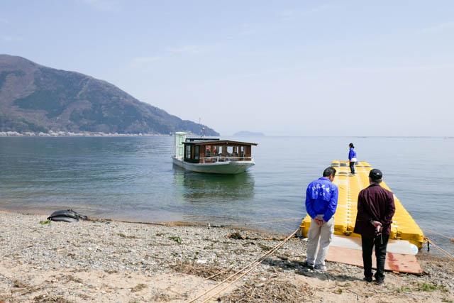 海津大崎の桜とお花見遊覧船