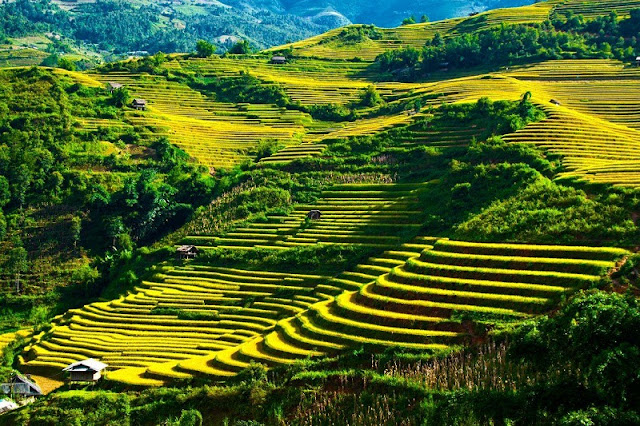 Yen Minh steppe explore in Ha Giang 1