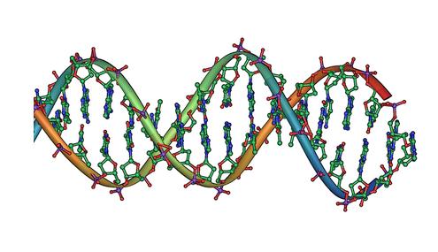 Metode Untuk Mendeteksi Penyakit Melalui DNA