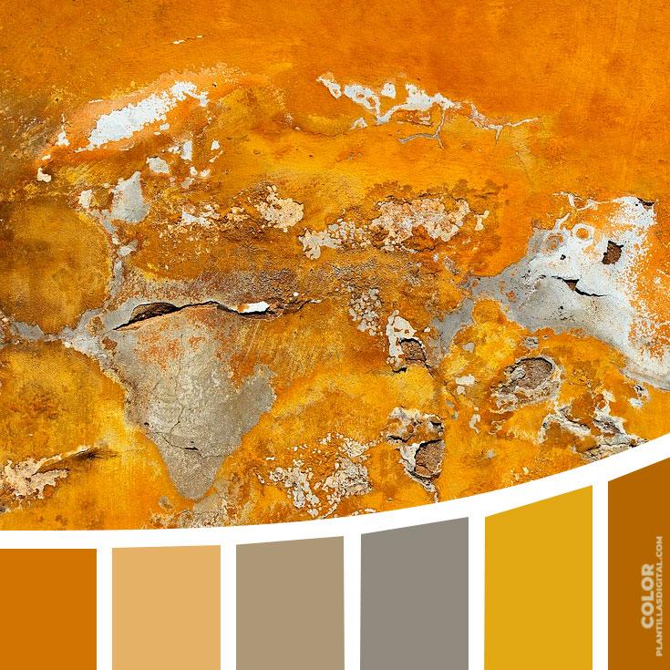 color_366