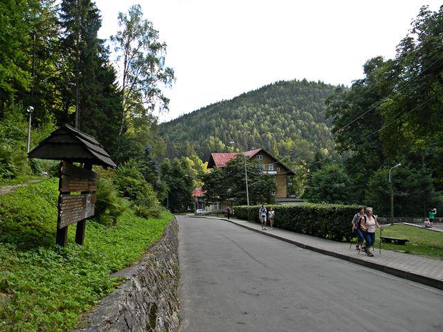 góry, Międzygórze, droga, turyści