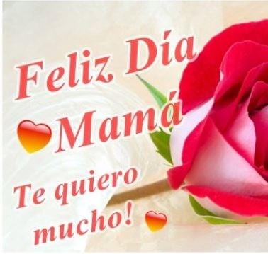 Trato O Truco Día De La Madre Imágenes Con Flores Y Frases