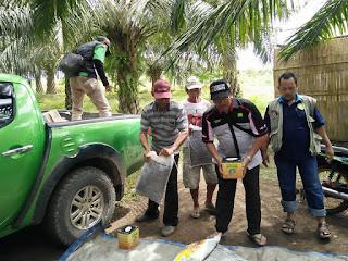cara aplikasi power untuk sawit,cara aplikasi power nutrition untuk sawit, cara penggunaan pupuk nasa untuk sawit, pupuk nasa untuk sawit, supernasa untuk sawit, pupuk sawit