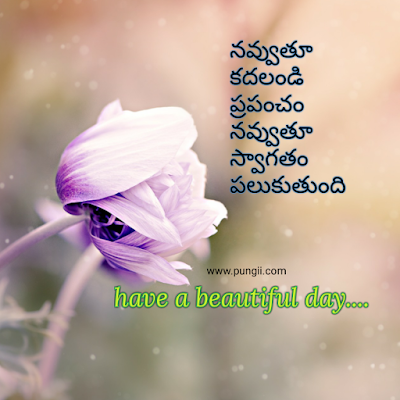 Fresh Telugu Good Morning Images/Quotes