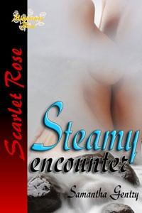Steamy Encounter