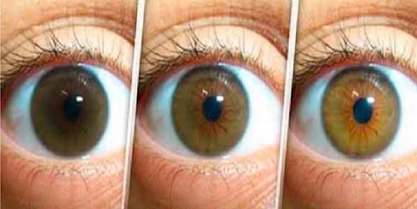 Resep Alami Untuk Membersihkan Mata, Mencegah Katarak Dan Meningkatkan Penglihatan !! Sangat Sederhana Tanpa Oprasi !!!