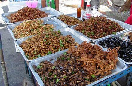 Nhện, dế, nhộng, trứng kiến, sâu non, đến con cà cuống... được người Campuchia chế thành nhiều món ăn