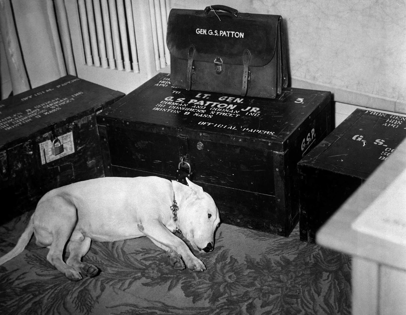 Willie standing by Patton's belongings, 1945.