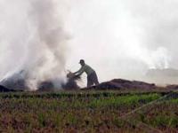 Masalah Polusi di Trenggalek Kota Yang Meningkat Tajam Tiap Panen Padi