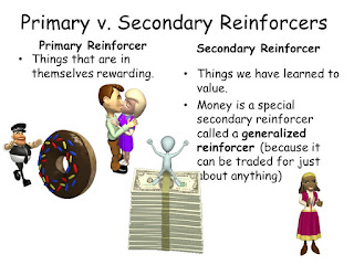 Primary Reinforcer and Generalized Reinforce