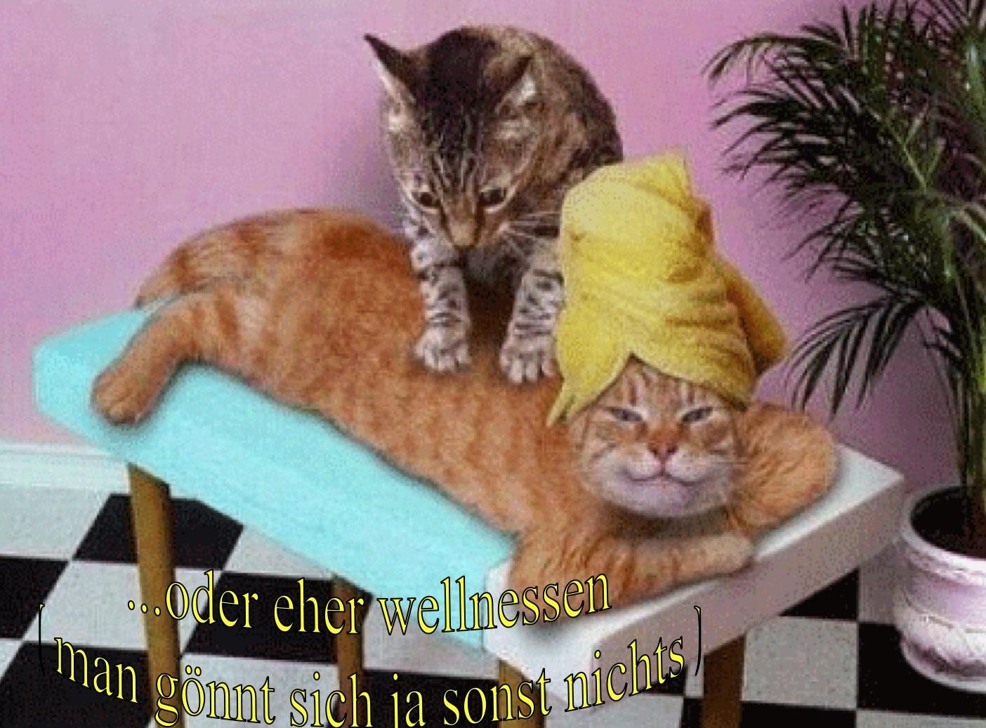 Massage Sprche Pinterest Massage Illuminati Card Game 210