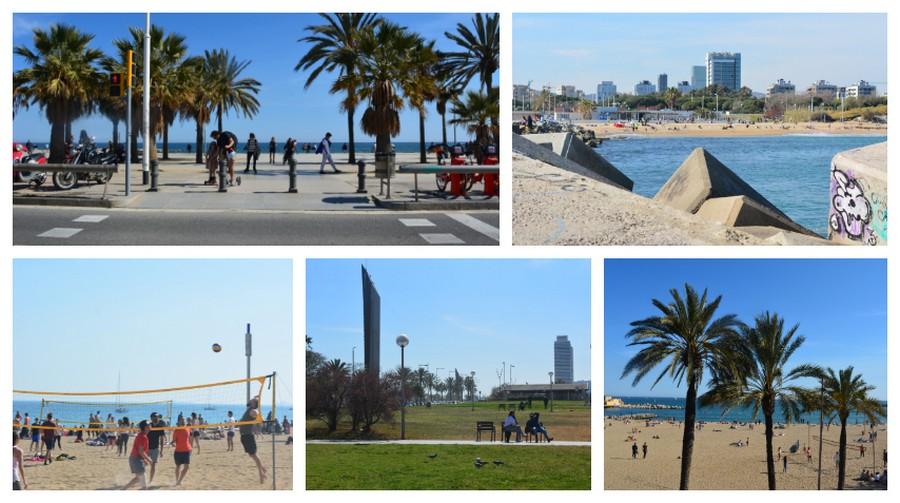 Balade sur la plage Barcelone