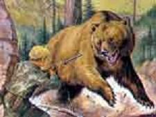 A Medveölő fia