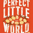 REVIEW: PERFECT LITTLE WORLD BY KEVIN WILSON