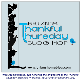 Thankful Thursday blog hop badge
