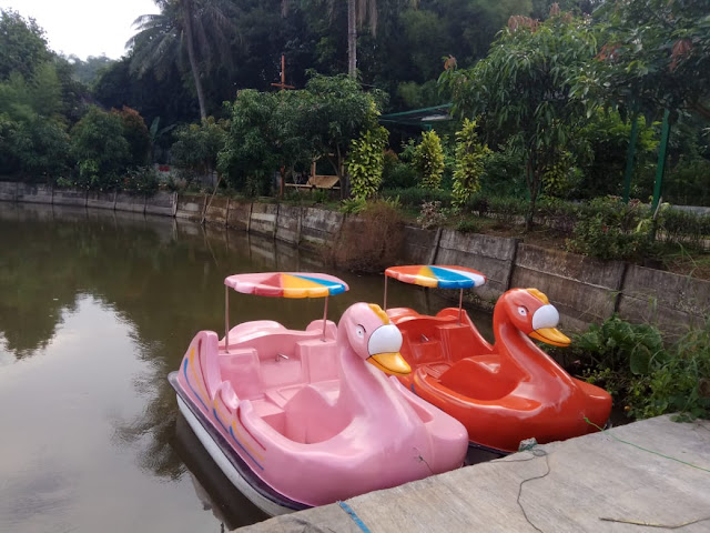 perahu bebek murah