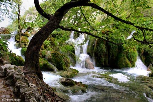 بحيرات بليتفيتش الكرواتية ،، جمال وروعة 43321544.jpg