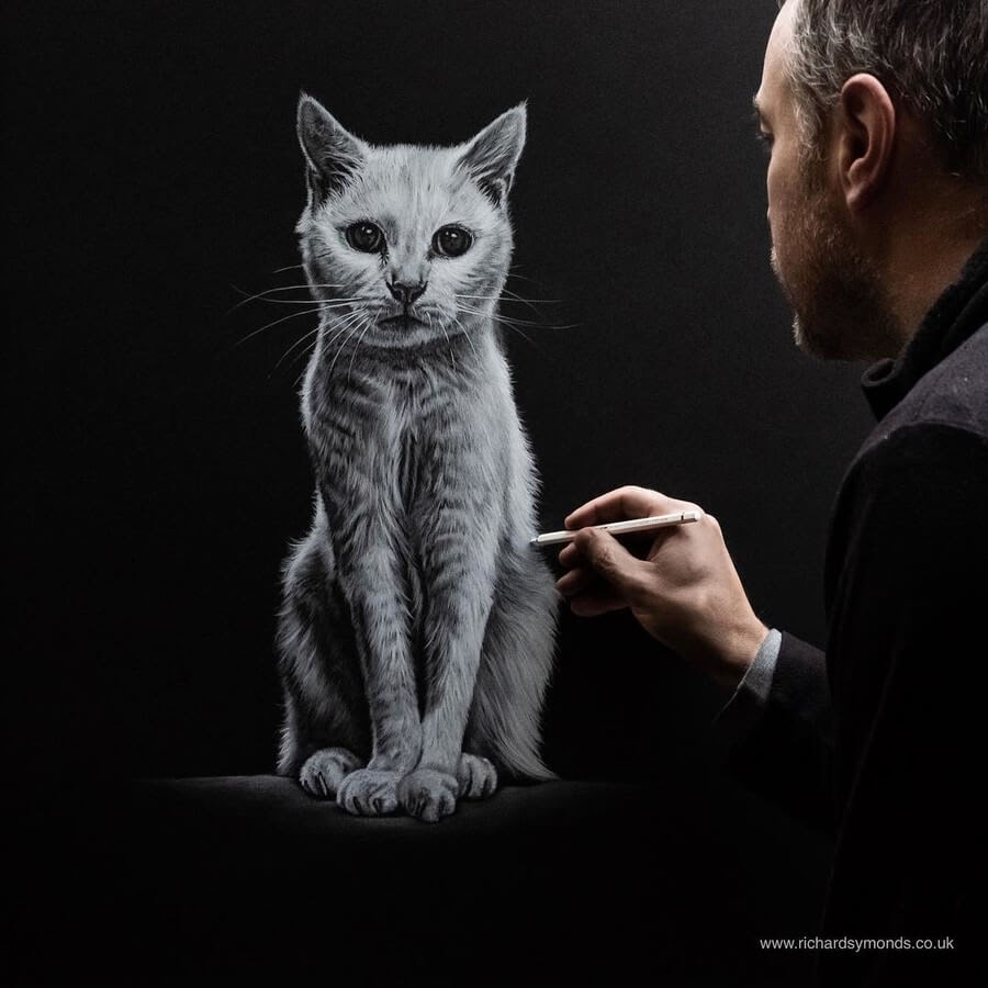 07-White Cat-Richard-Symonds-www-designstack-co
