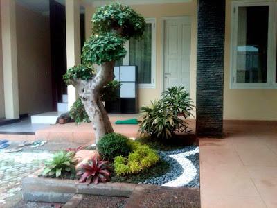 Taman Kering Eksotis Tukang Taman Surabaya