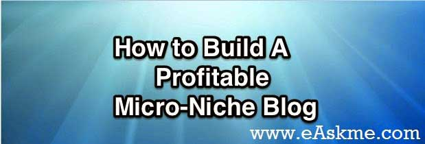How to Build Micro Niche Site Make Money : eAskme