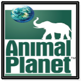 Animal Planet Online Live TV Channel