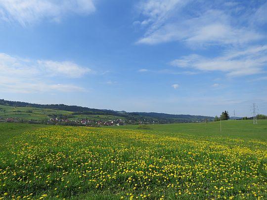 Wieś Podsarnie (węg. Szárnya, słow. Sŕnie).