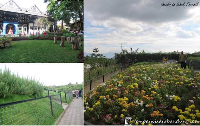 Berwisata Khas Pedesaan Eropa di Farmhouse Lembang Bandung