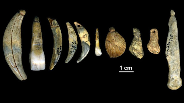 Palaeoproteomics helps differentiate between modern humans and Neanderthals