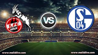 مشاهدة مباراة شالكه 04 وكولن Schalke 04 vs FC Koln بث مباشر بتاريخ 19-12-2017 كأس ألمانيا