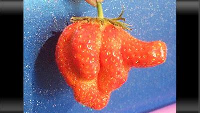 photo buah strawberry yang menyerupai jari sedang menunjuk