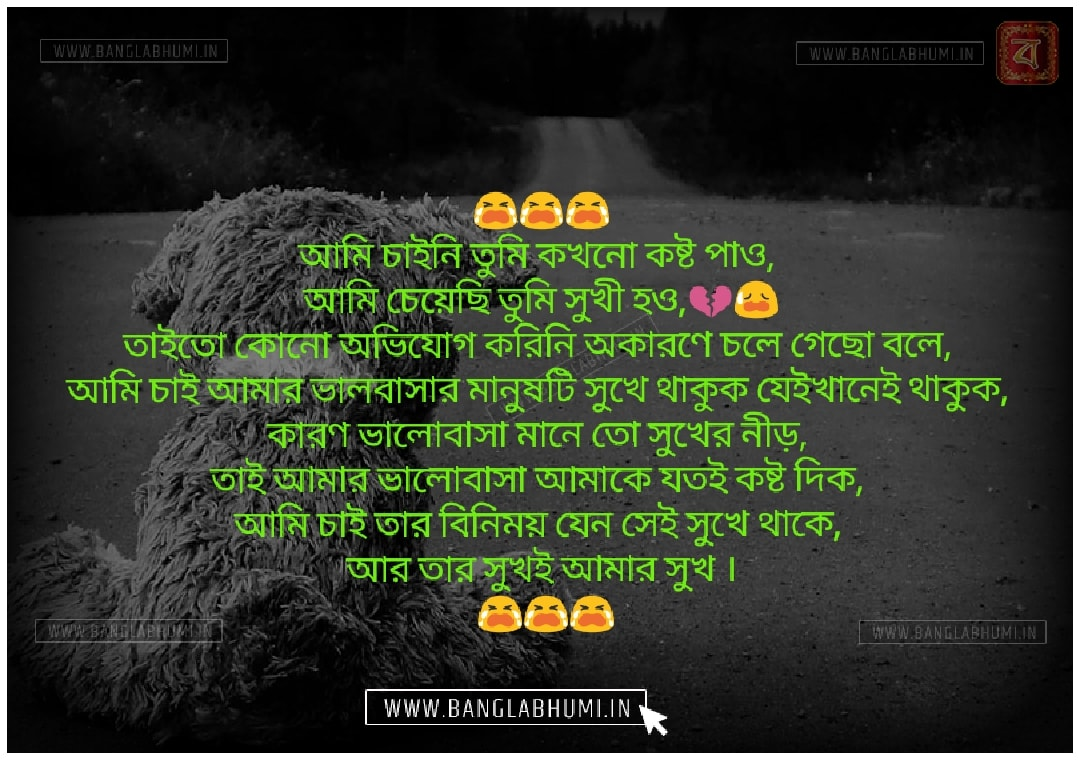 Bangla Sad Love Shayari Status