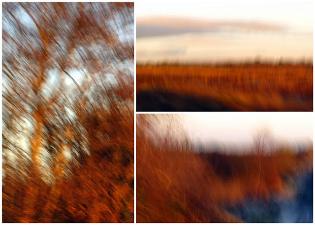 Colourful collage © Annie Japaud Photography, blur, motion,