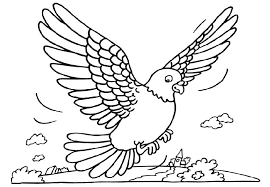 Printable Pigeons Coloring Sheet For Kids