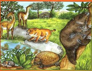 la preistoria facile per la scuola, i mammiferi