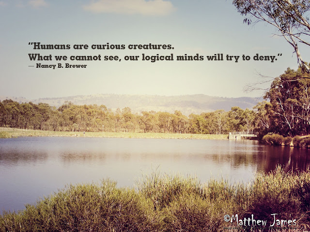 """""""Humans are curious creatures. What we cannot see, our logical minds will try to deny."""" ― Nancy B. Brewer"""