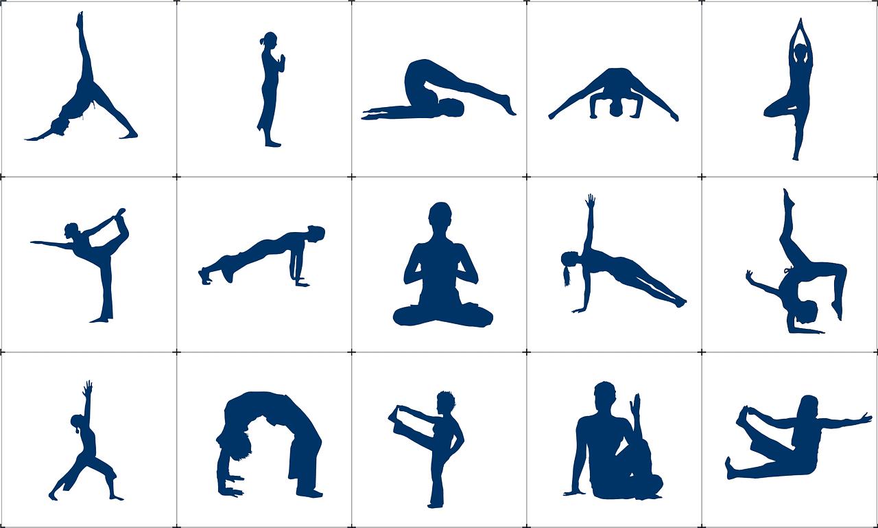 Hatha Yoga Pranayama And Meditation