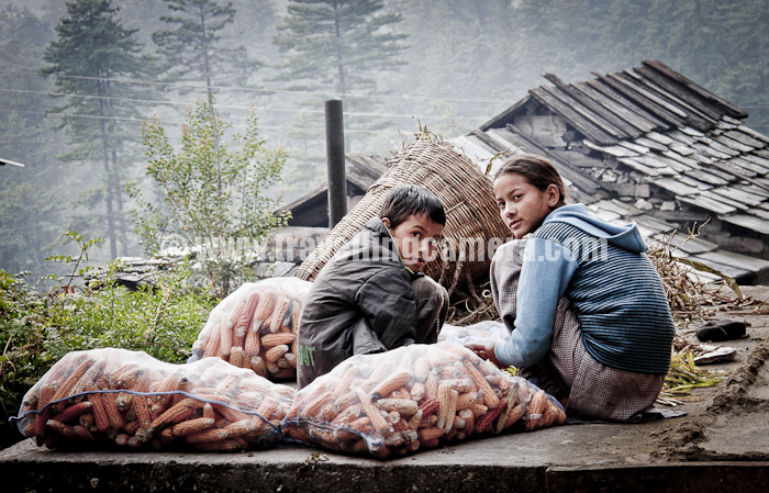 Photo Journey Through Villages Of Usa Upper Shimla Area