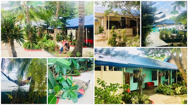 Bamboo Paradise Beach Resort Argao Cebu