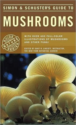 Top 10 Books about Mushrooms