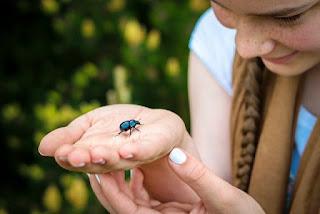 Cara Alami Menghilangkan Tahi Lalat
