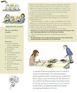 Respuestas Apoyo Primaria Ciencias Naturales 4to Grado Bloque II Tema 1 Diversidad en la reproducción