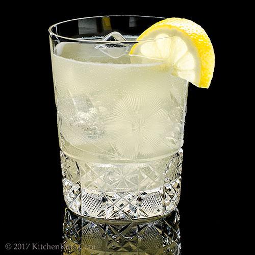 Gin Daisy Cocktail